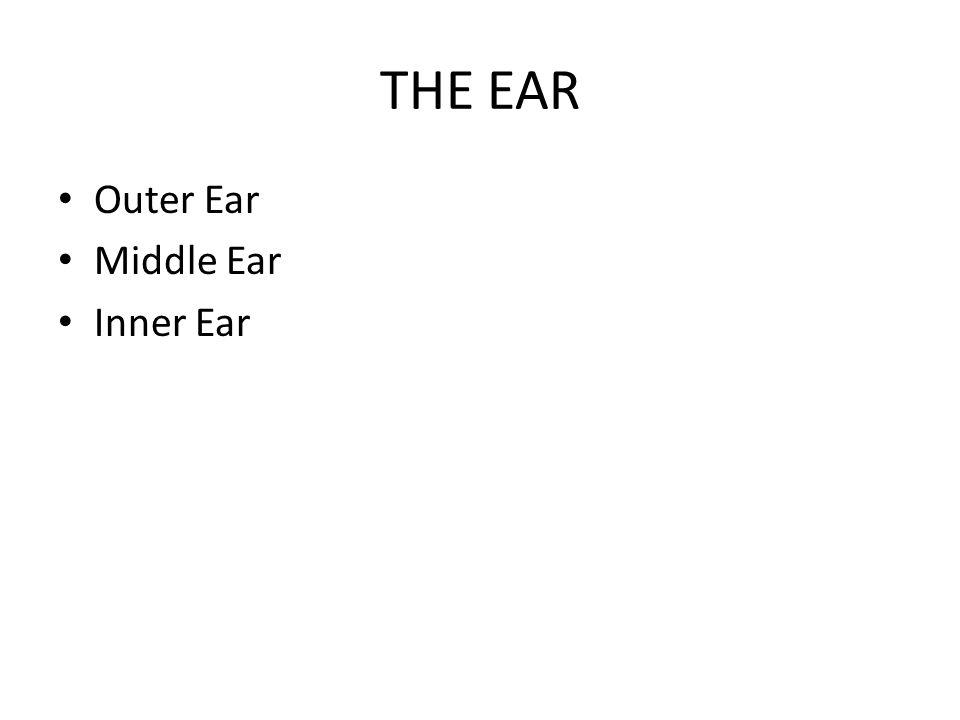 THE EAR Outer Ear Middle Ear Inner Ear