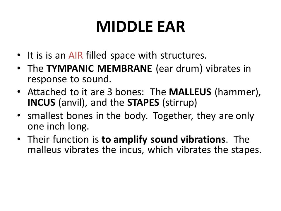 MIDDLE EAR It is is an AIR filled space with structures.