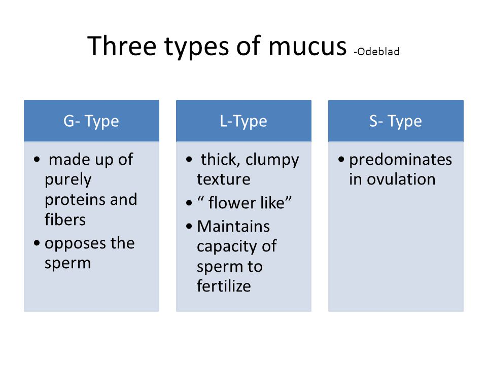 Three types of mucus -Odeblad