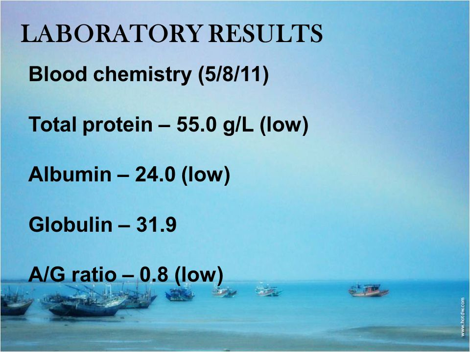Laboratory results Blood chemistry (5/8/11)