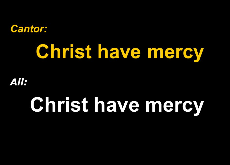 Cantor: Christ have mercy All: