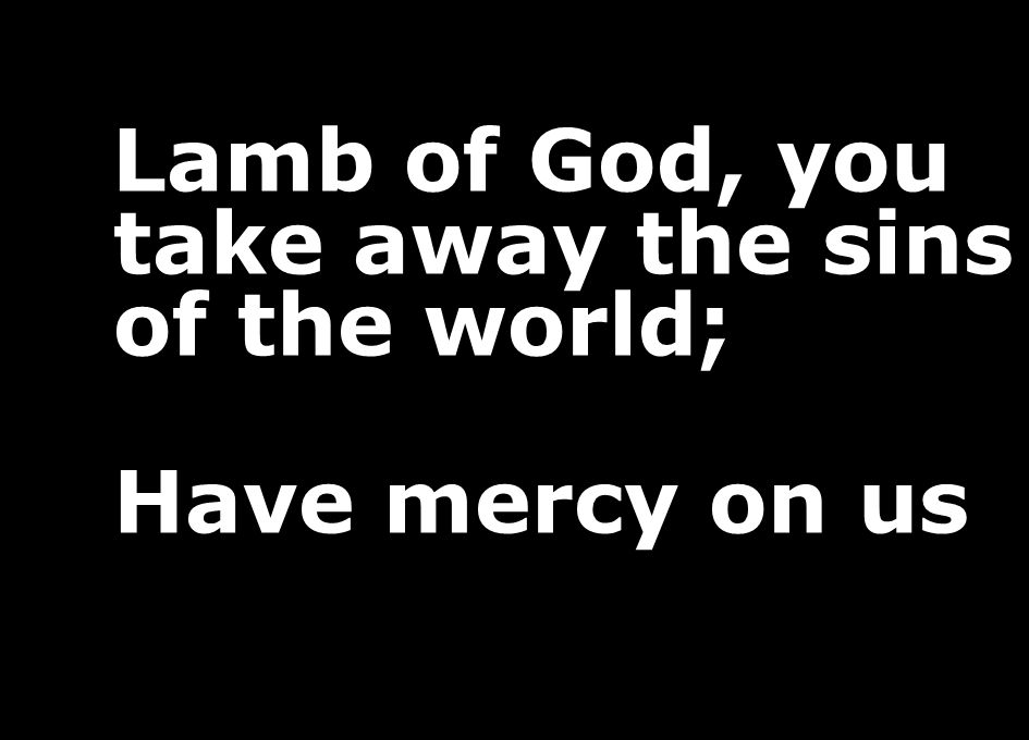 Lamb of God, you take away the sins of the world; Have mercy on us