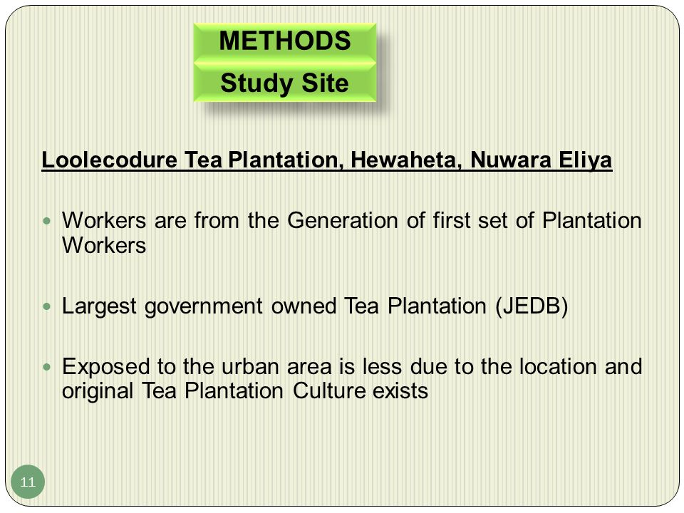 Study Site METHODS Loolecodure Tea Plantation, Hewaheta, Nuwara Eliya