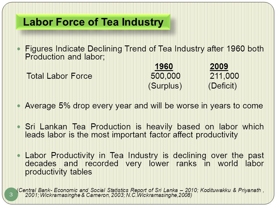 Labor Force of Tea Industry