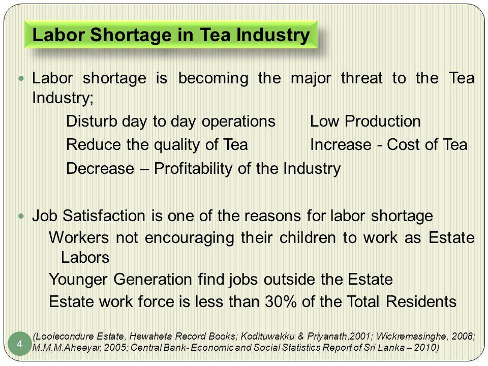 Labor Shortage in Tea Industry