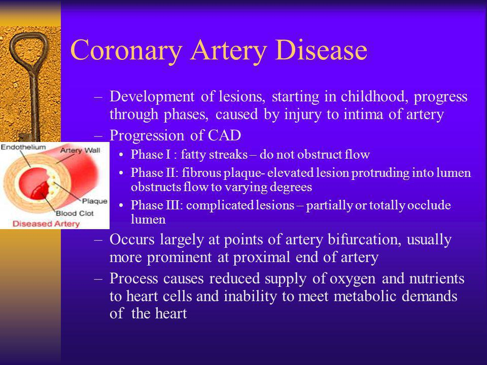 coronary artery disease The blockage of the arteries within the heart, due to plaque build up, causes coronary artery disease, also called coronary heart disease an overview of the coronary.