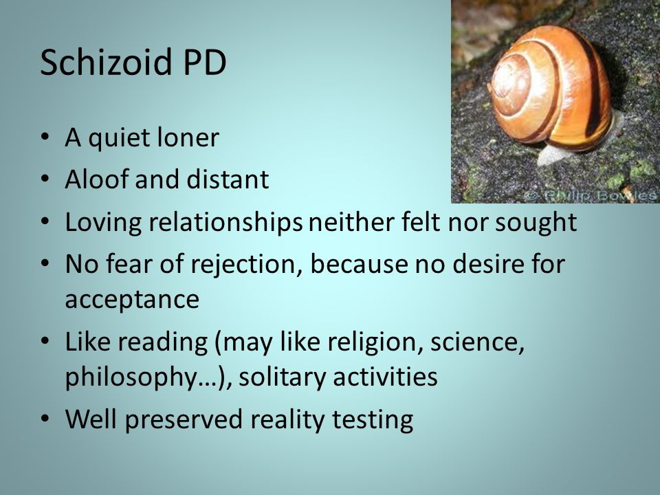 Schizoid PD A quiet loner Aloof and distant