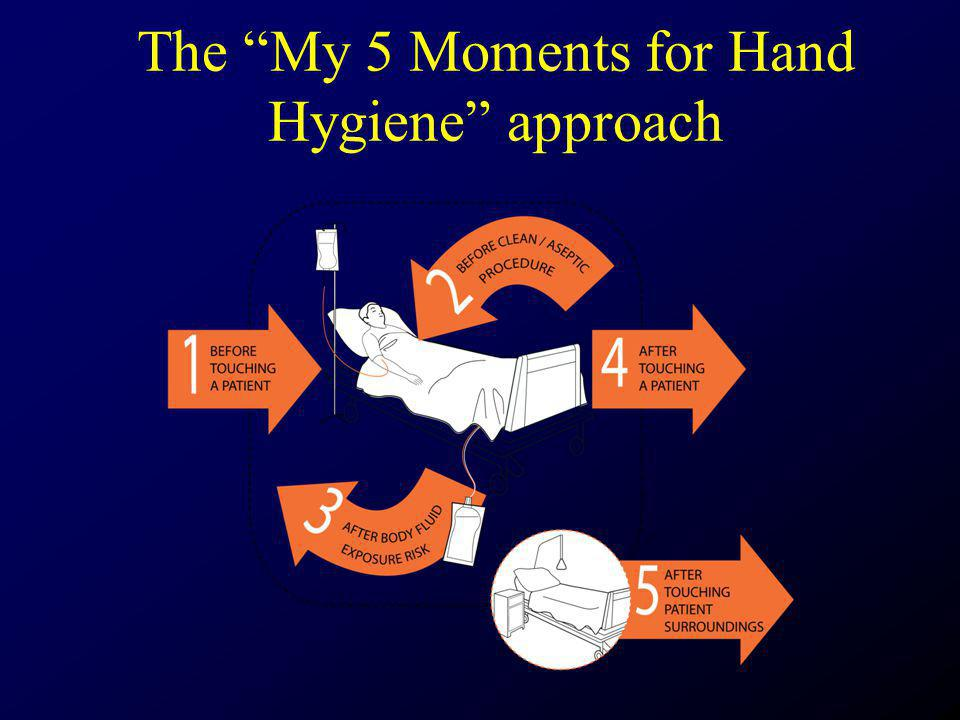 The My 5 Moments for Hand Hygiene approach