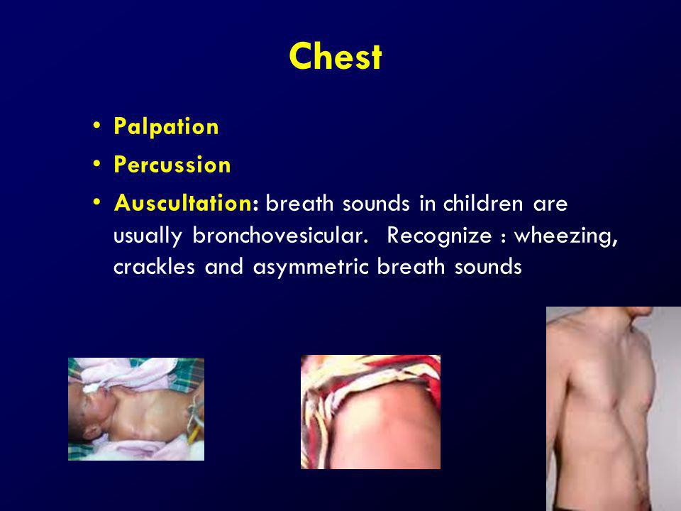 Chest Palpation Percussion