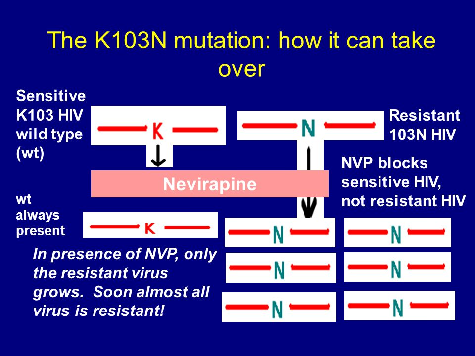 The K103N mutation: how it can take over