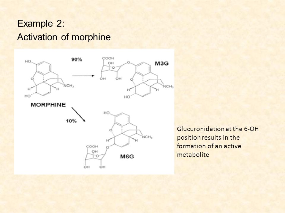 Example 2: Activation of morphine