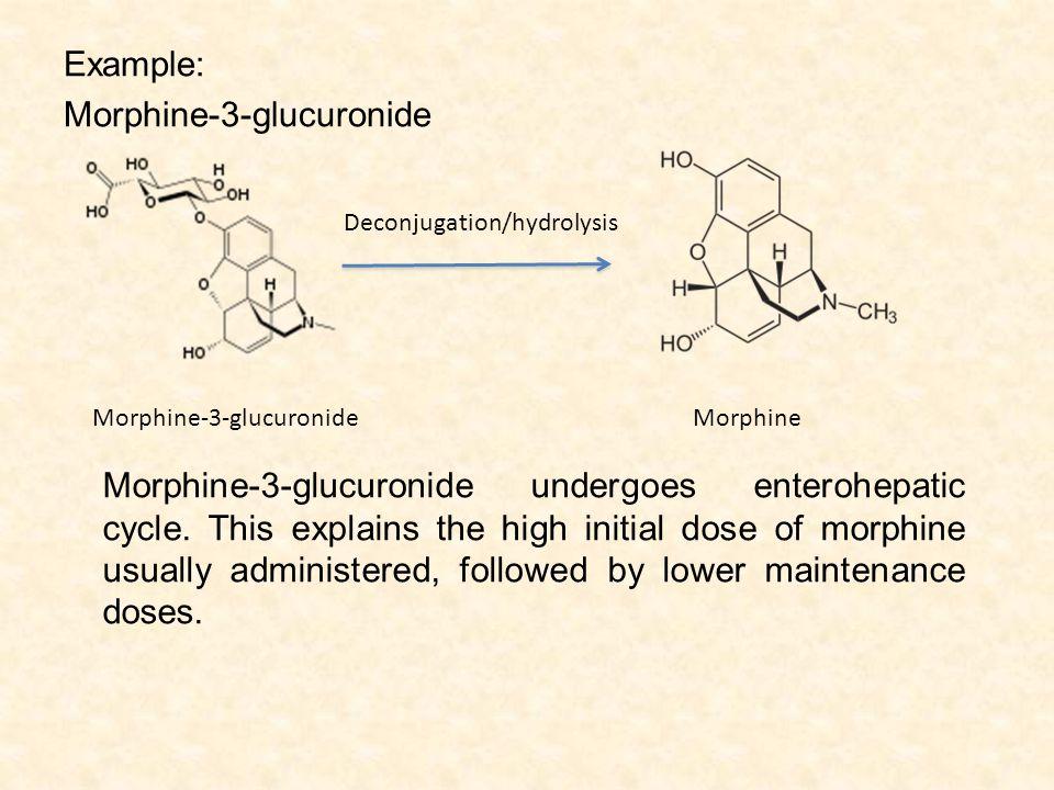 Example: Morphine-3-glucuronide