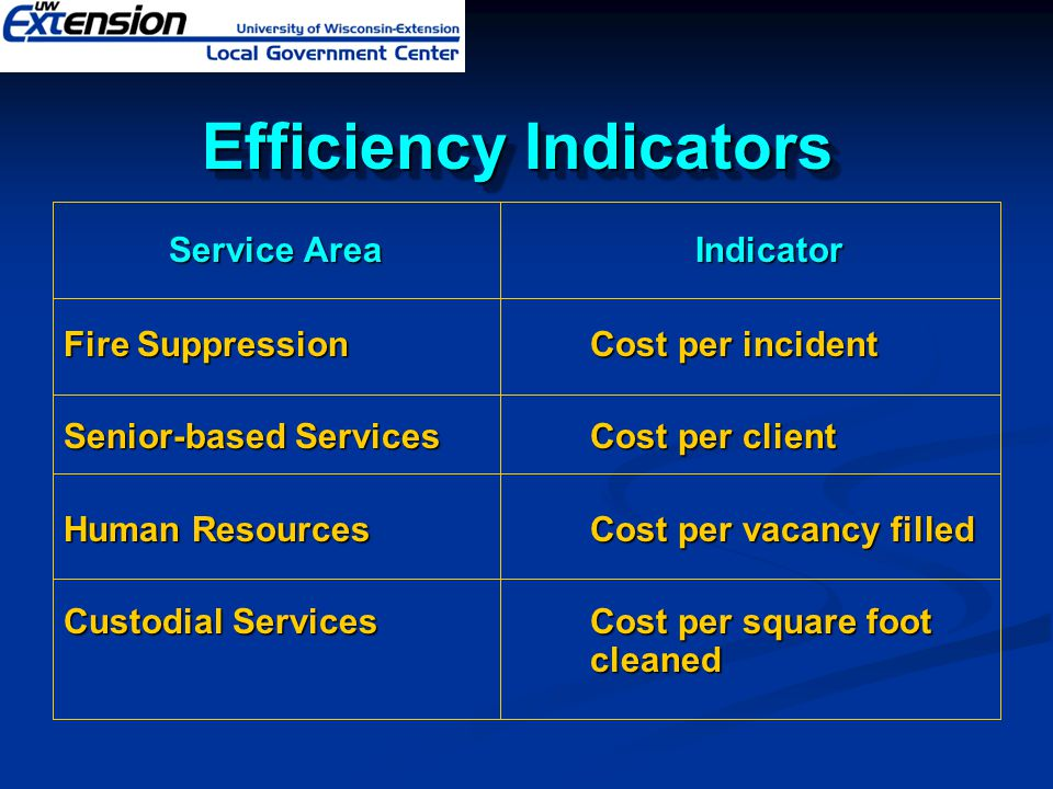 Efficiency Indicators