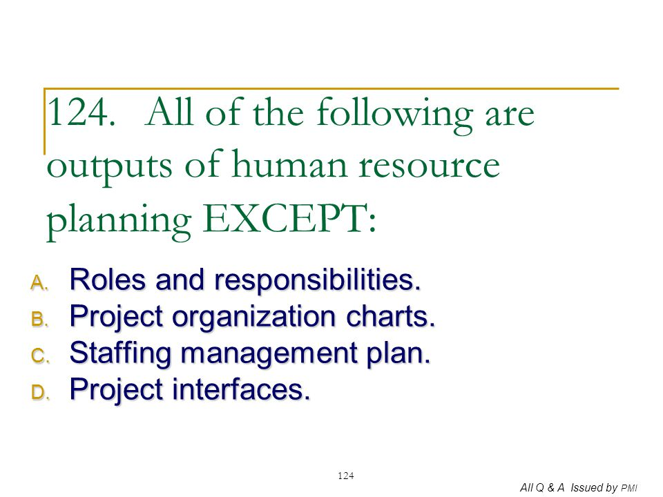 124. All of the following are outputs of human resource planning EXCEPT: