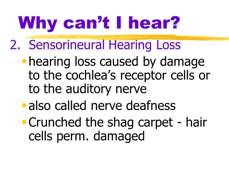 Why can't I hear 2. Sensorineural Hearing Loss