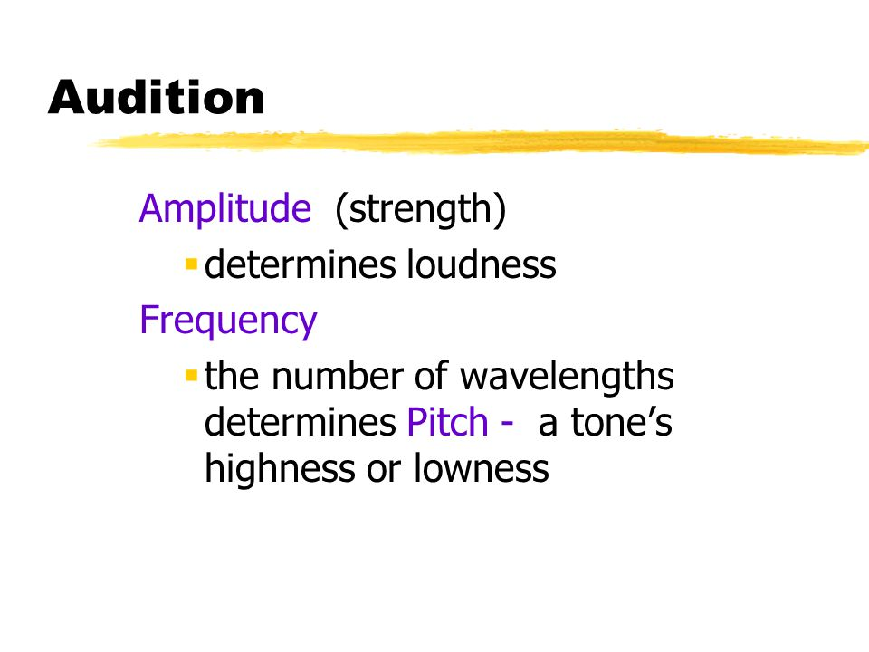 Audition Amplitude (strength) determines loudness Frequency