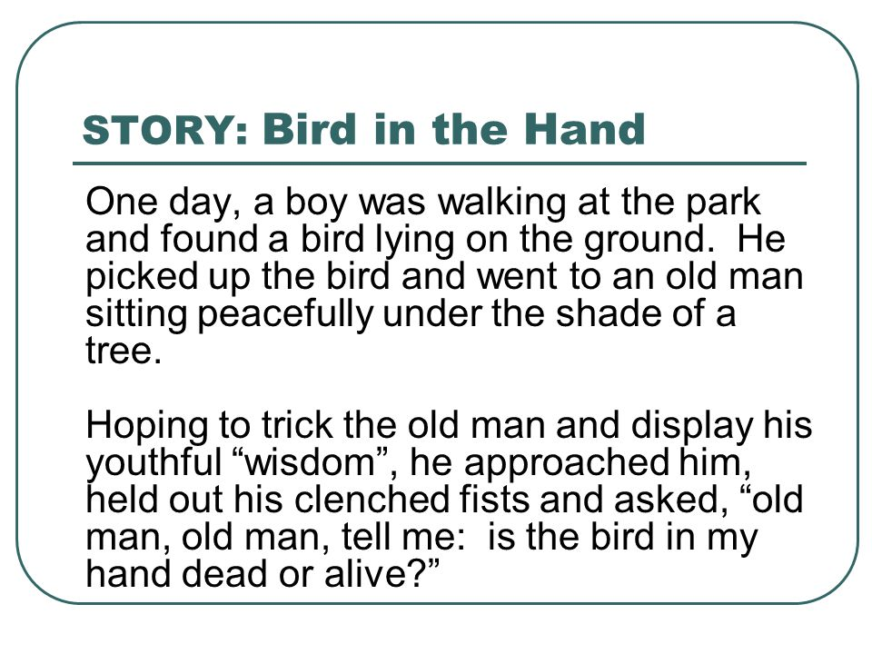 STORY: Bird in the Hand