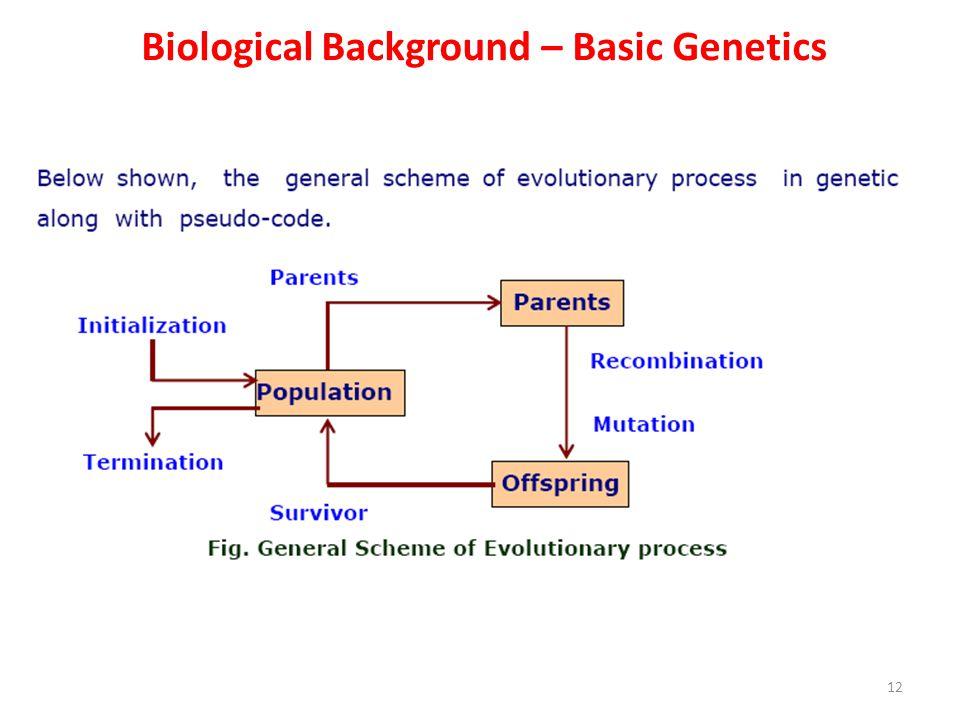 Biological Background – Basic Genetics