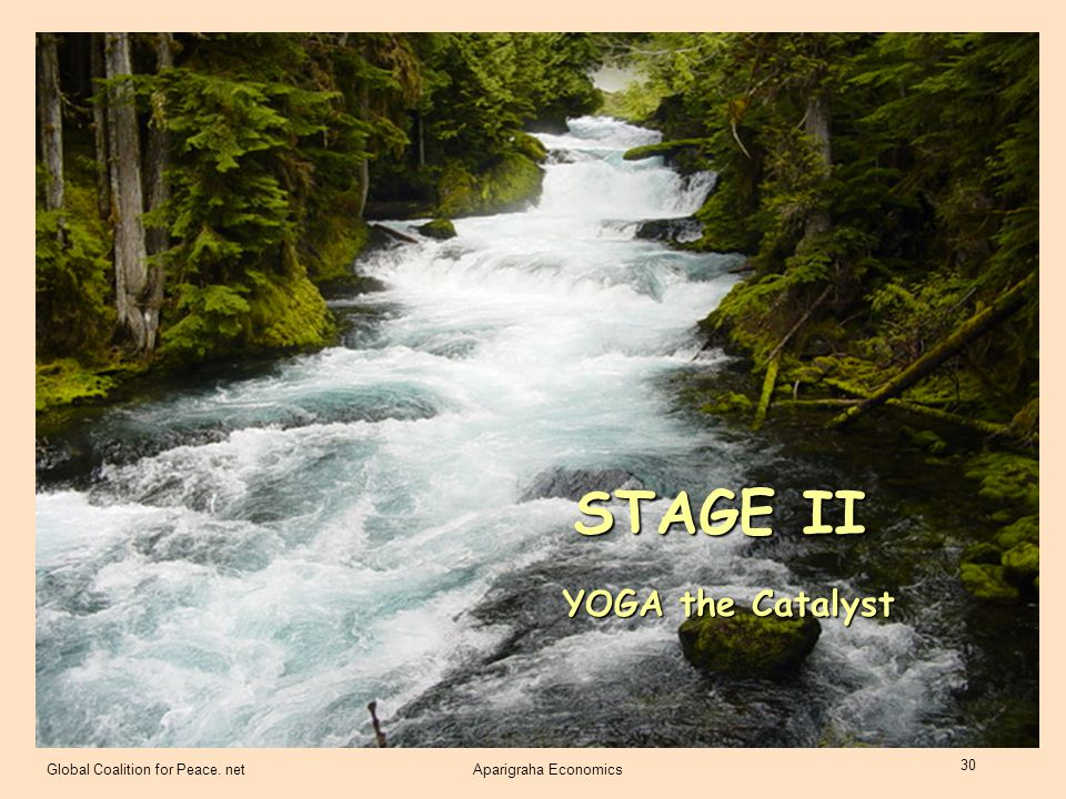STAGE II YOGA the Catalyst