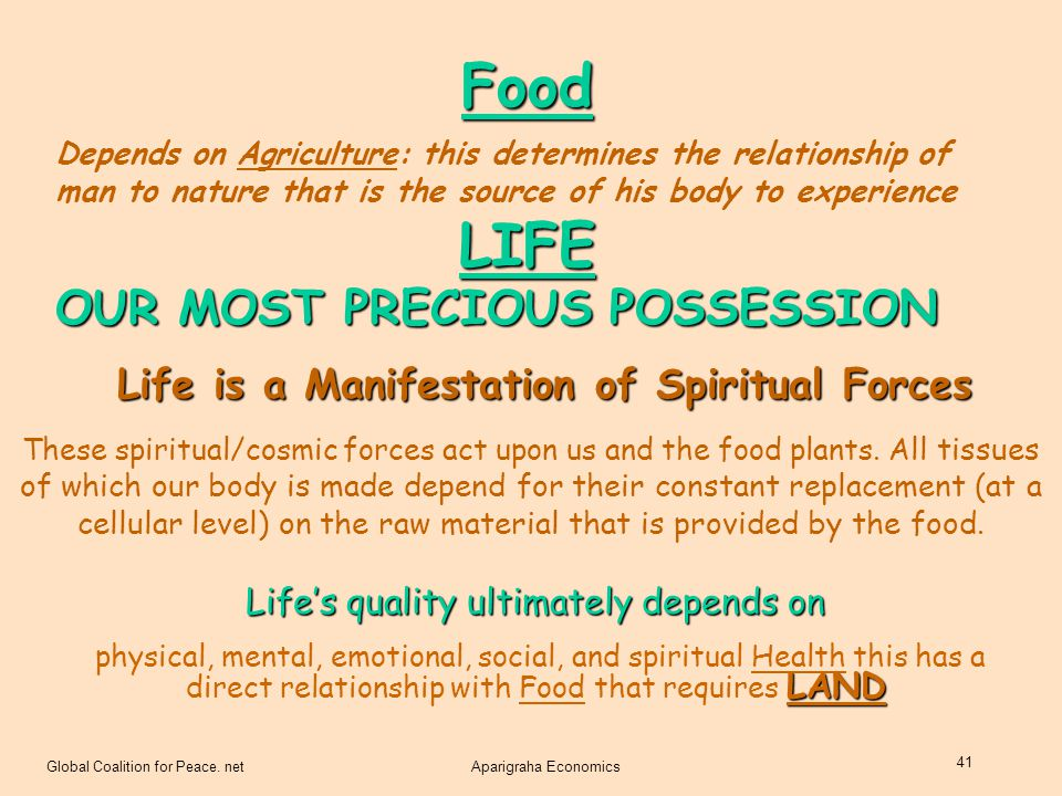 Life is a Manifestation of Spiritual Forces