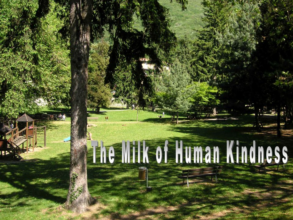 The Milk of Human Kindness