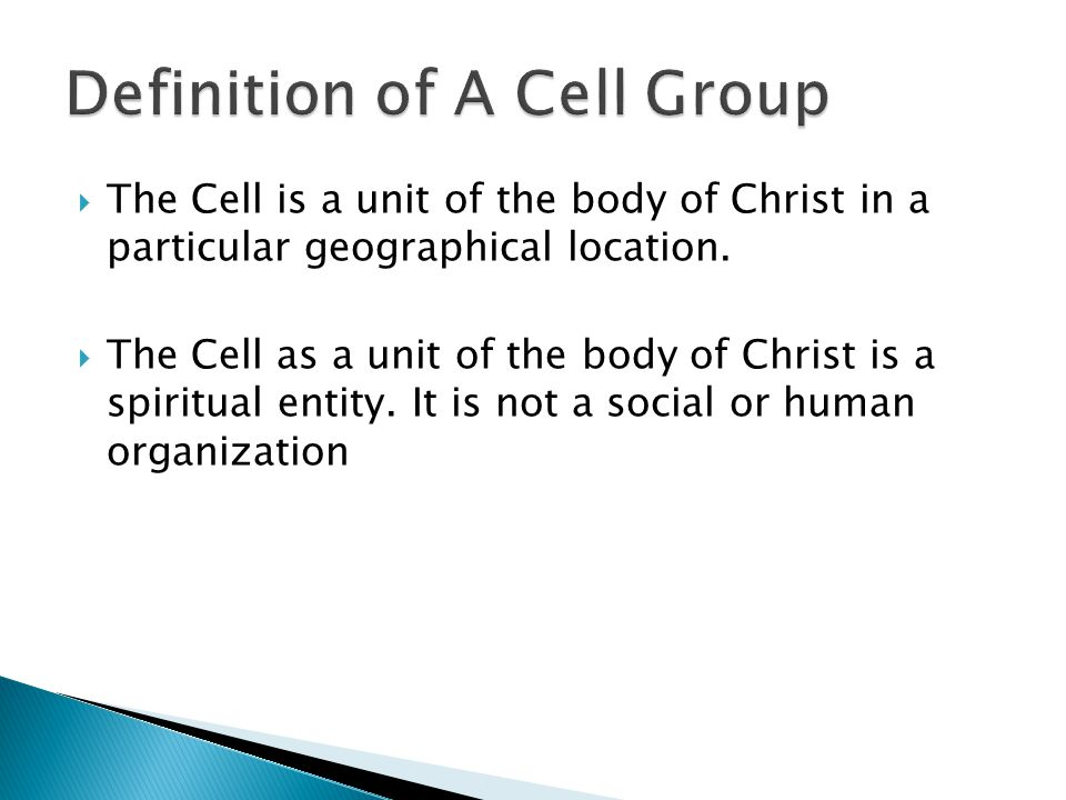 Definition of A Cell Group