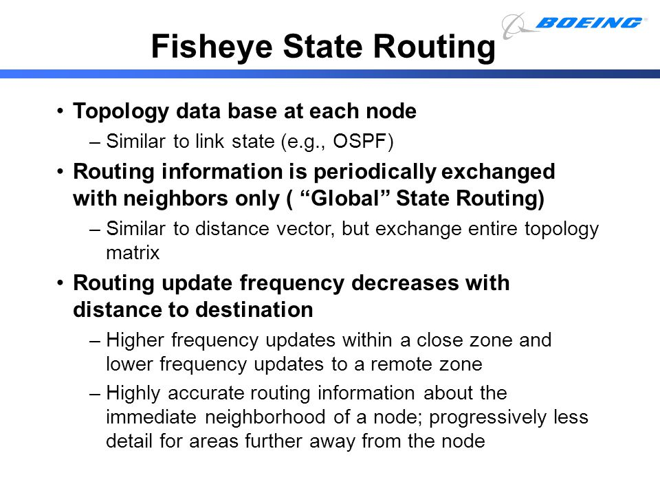 Fisheye State Routing Topology data base at each node