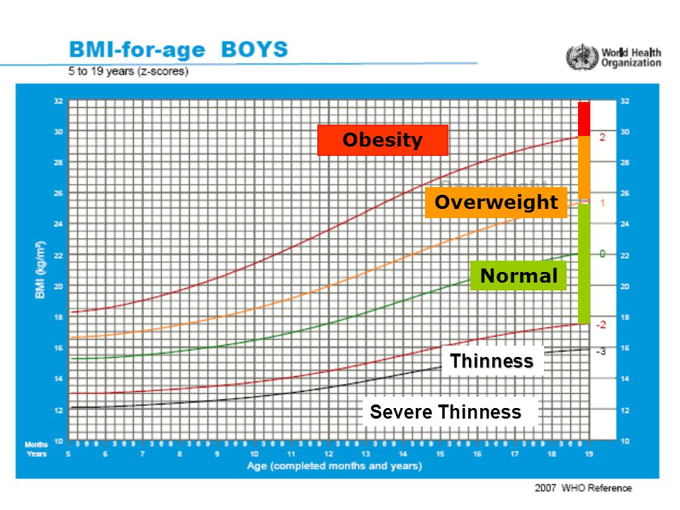 Obesity Overweight Normal Thinness Severe Thinness