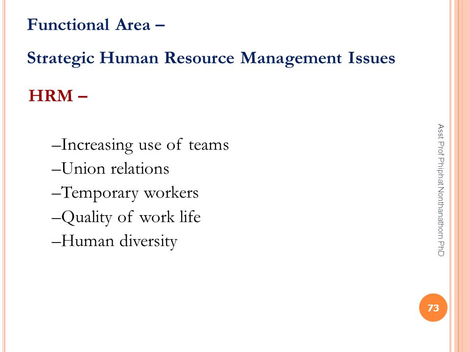 Strategic Human Resource Management Issues