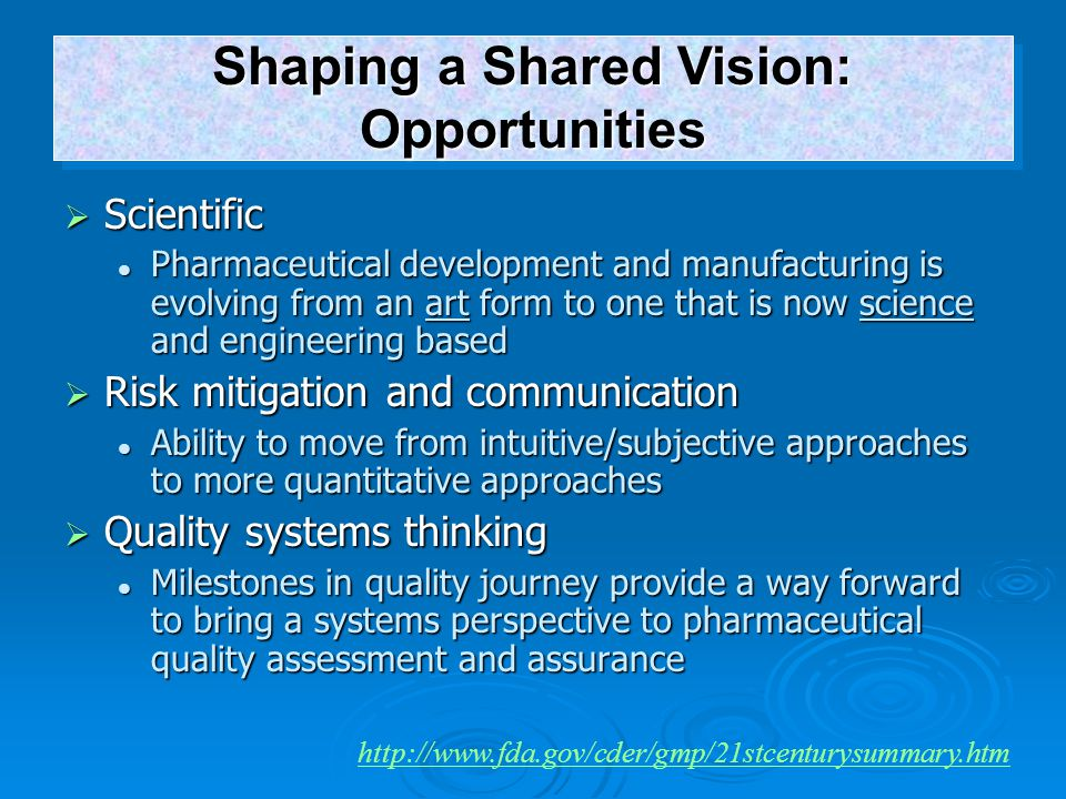 Shaping a Shared Vision: Opportunities