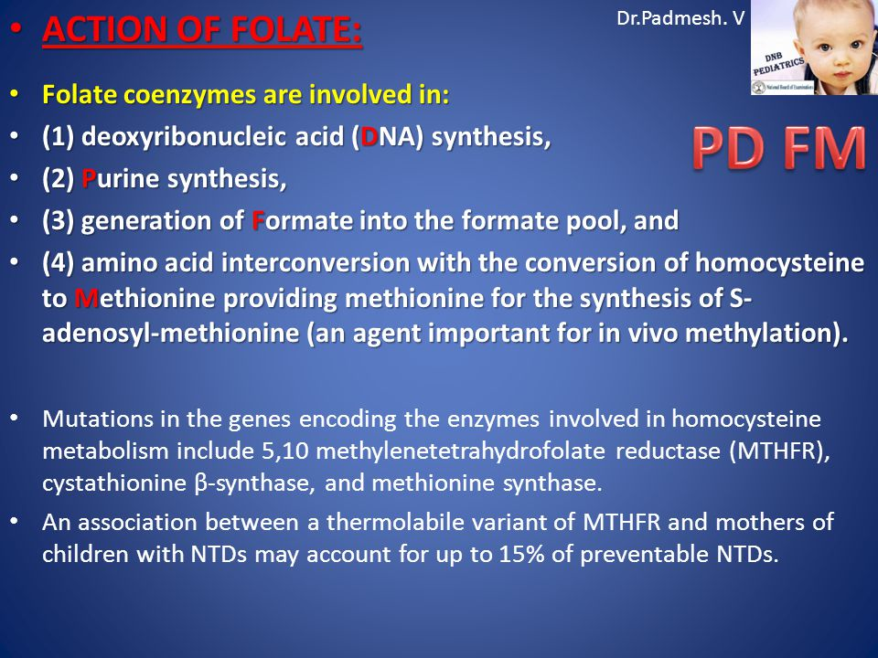 PD FM ACTION OF FOLATE: Folate coenzymes are involved in: