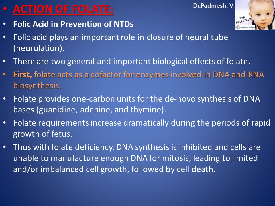 ACTION OF FOLATE: Folic Acid in Prevention of NTDs