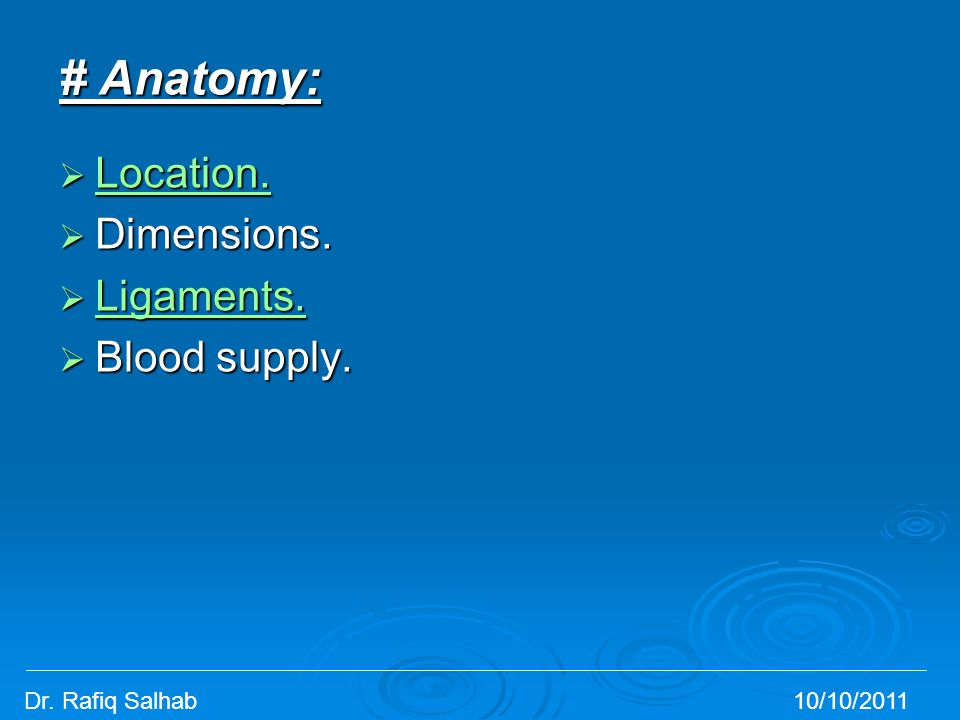 # Anatomy: Location. Dimensions. Ligaments. Blood supply.