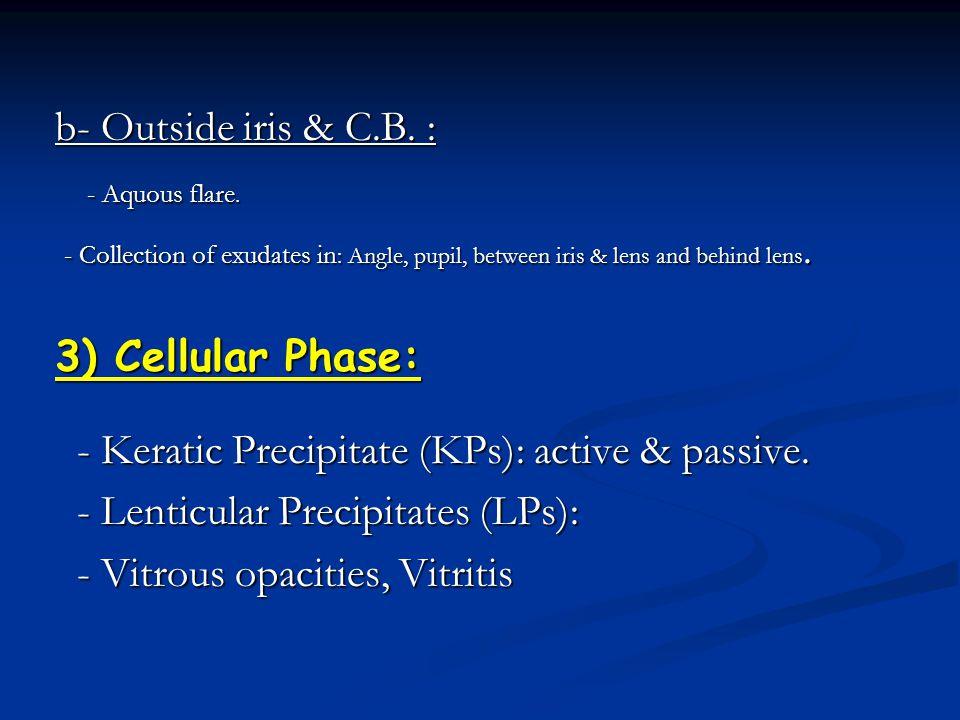 - Keratic Precipitate (KPs): active & passive.