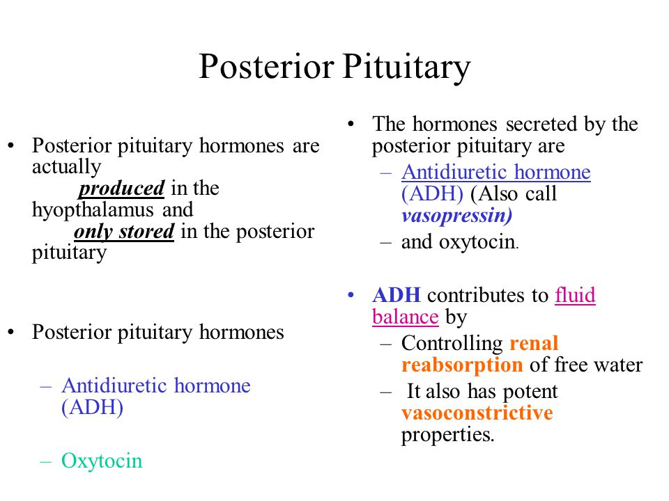 Posterior Pituitary Posterior pituitary hormones are actually produced in the hyopthalamus and only stored in the posterior pituitary.