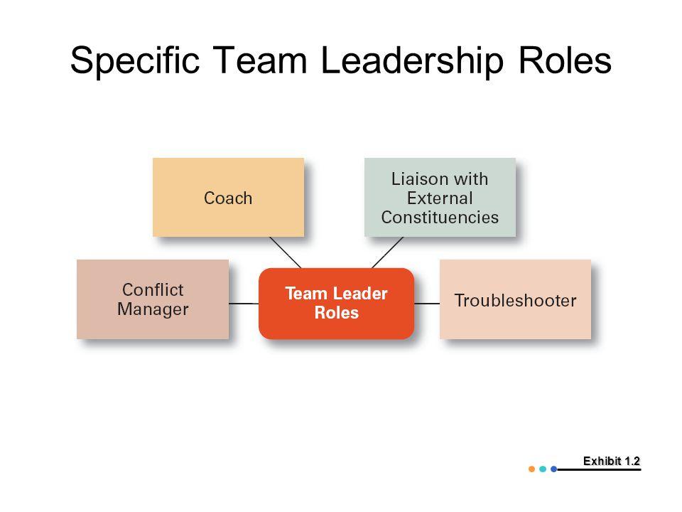 Specific Team Leadership Roles
