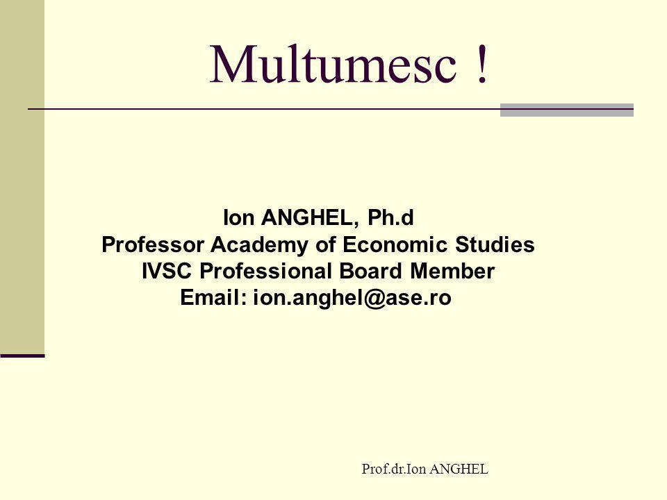 Professor Academy of Economic Studies IVSC Professional Board Member