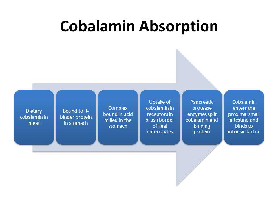 Cobalamin Absorption Dietary cobalamin in meat