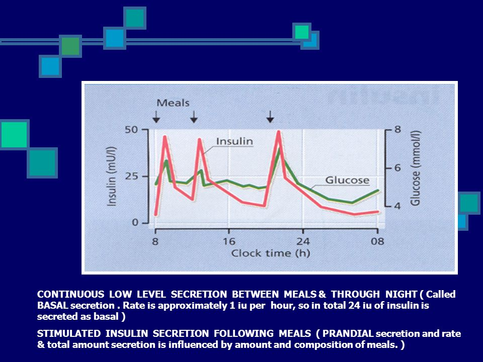 CONTINUOUS LOW LEVEL SECRETION BETWEEN MEALS & THROUGH NIGHT ( Called BASAL secretion . Rate is approximately 1 iu per hour, so in total 24 iu of insulin is secreted as basal )