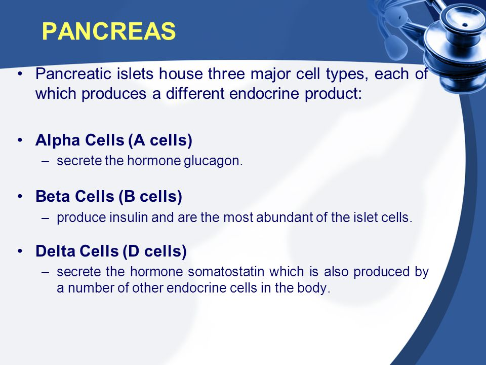 PANCREAS Pancreatic islets house three major cell types, each of which produces a different endocrine product: