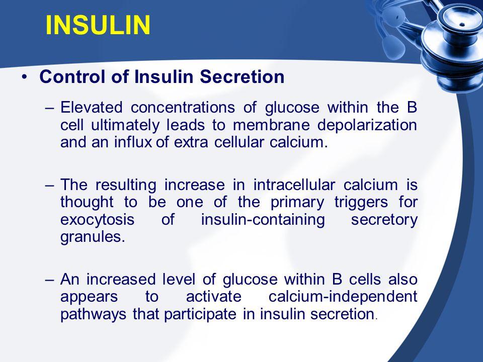 INSULIN Control of Insulin Secretion