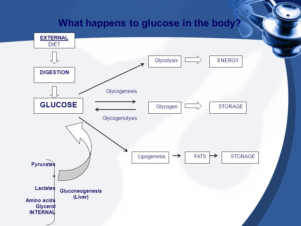 What happens to glucose in the body