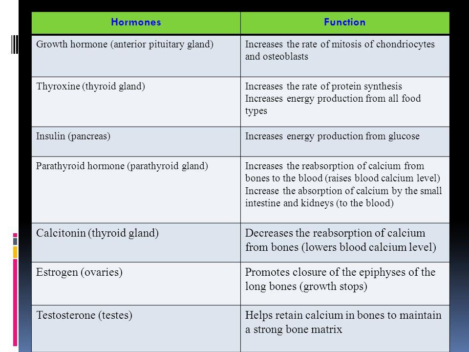 Calcitonin (thyroid gland)