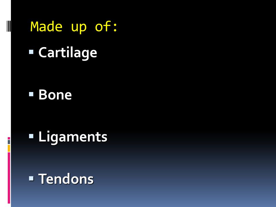 Made up of: Cartilage Bone Ligaments Tendons