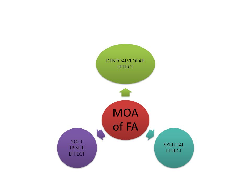 MOA of FA DENTOALVEOLAR EFFECT SKELETAL EFFECT SOFT TISSUE EFFECT