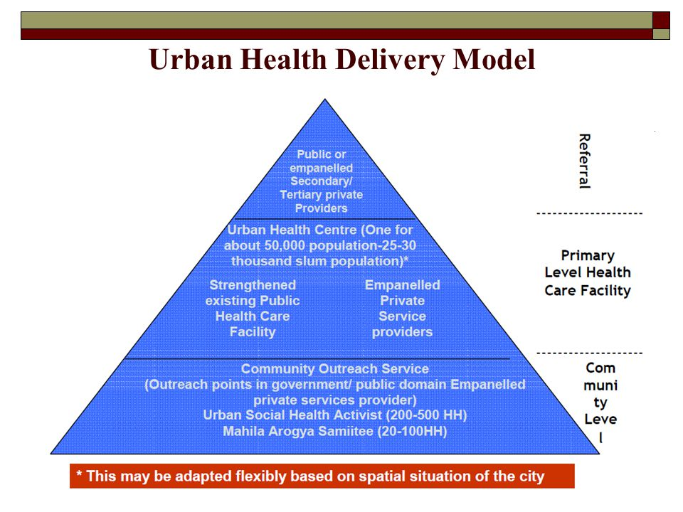 Urban Health Delivery Model