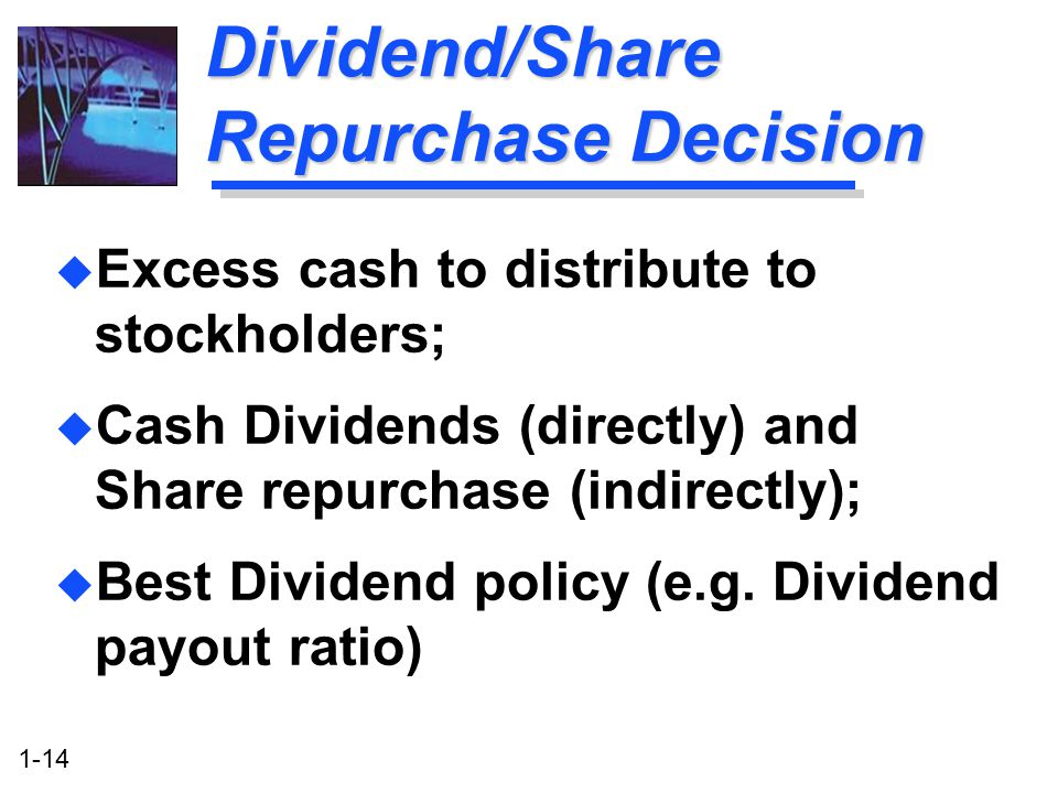 Dividend/Share Repurchase Decision