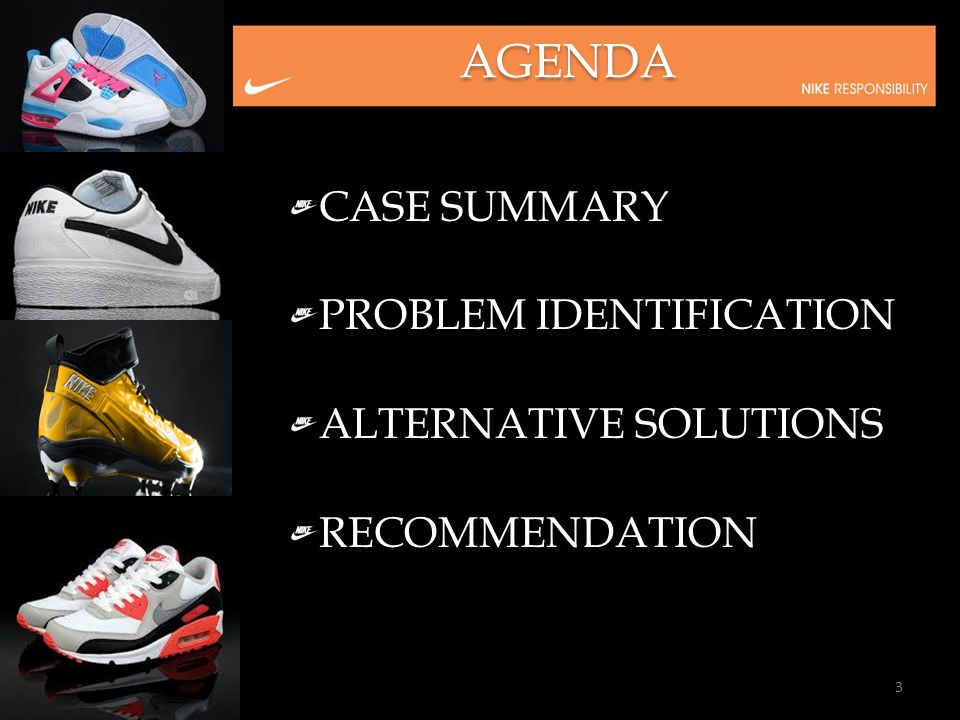 AGENDA CASE SUMMARY PROBLEM IDENTIFICATION ALTERNATIVE SOLUTIONS