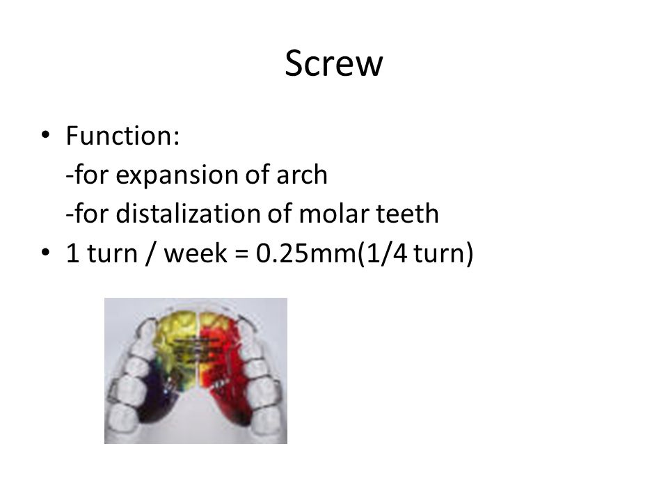 Screw Function: -for expansion of arch