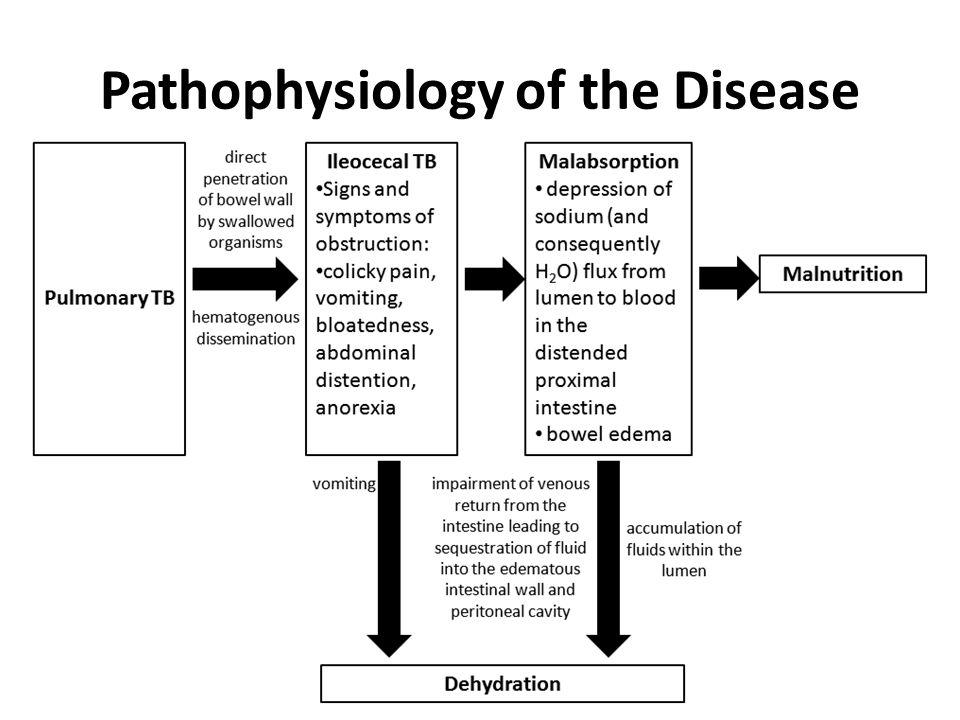 Pathophysiology of the Disease